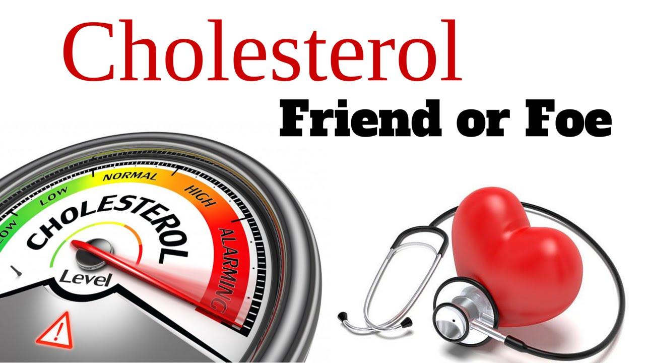 Good Cholesterol food